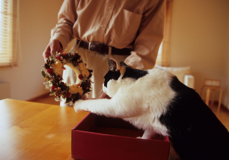 クリスマスリース…の箱_c0181457_1514421.jpg