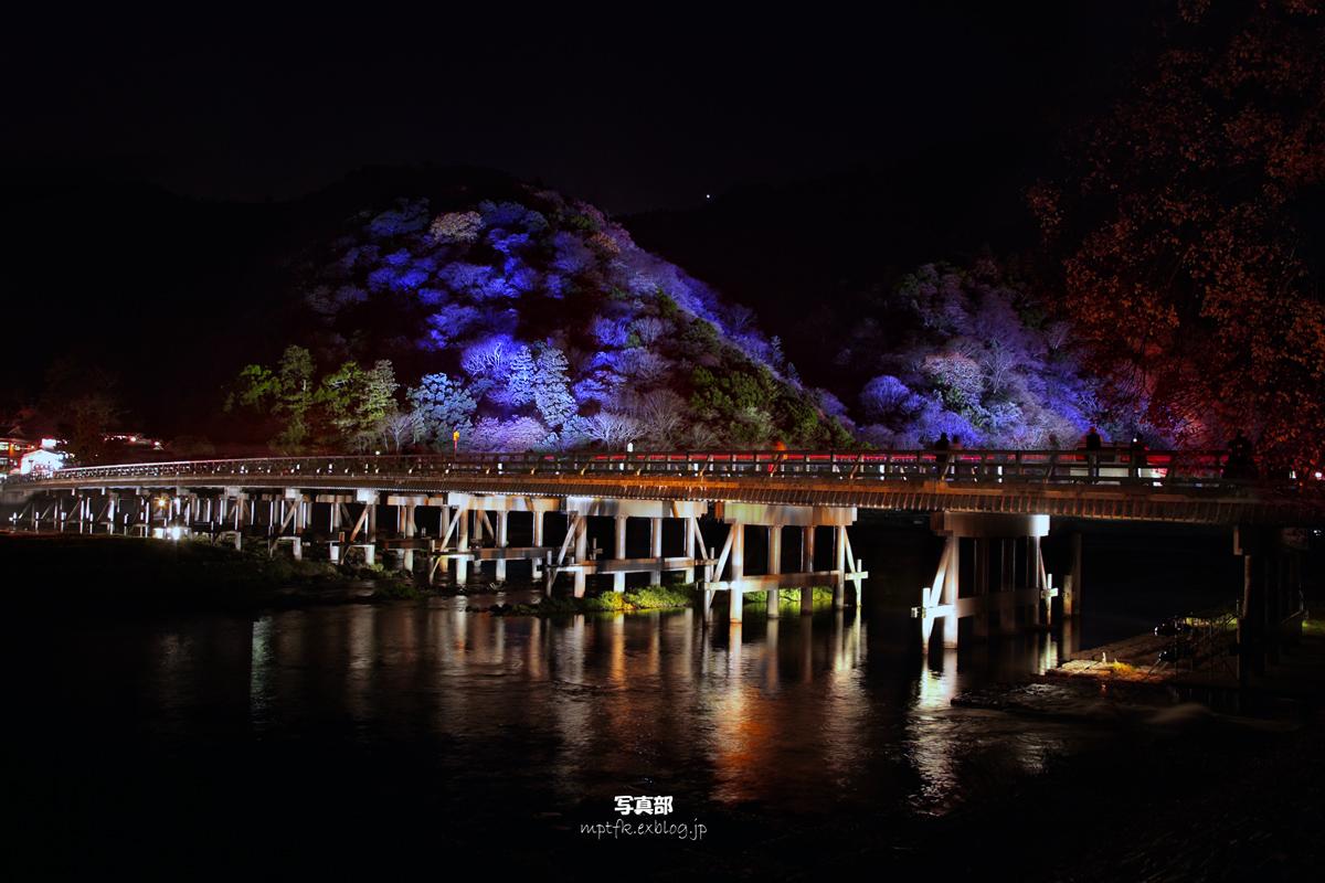 京都 嵐山花灯路 2008 2_f0021869_23394864.jpg