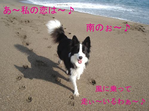 f0132070_0372982.jpg