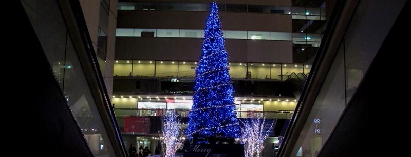08年12月上京チャリティー写真展_c0129671_21574930.jpg