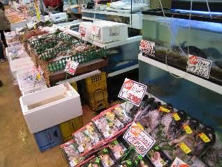 西宮 魚問屋_b0054727_23372752.jpg