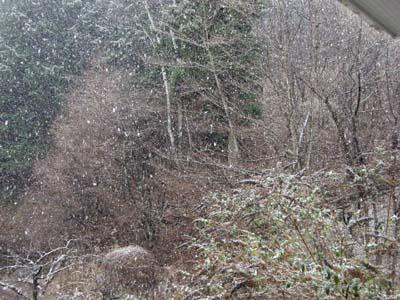 雨後雪後晴_d0127634_20271398.jpg