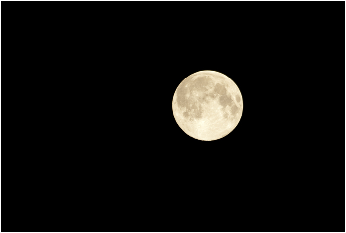 昨夜の月_d0101050_0291026.jpg