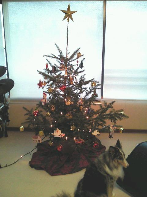 でけた、クリスマスツリー_b0071355_16155389.jpg