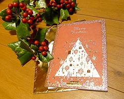 ちょっとはやめのメリークリスマス♪_d0050155_7131411.jpg