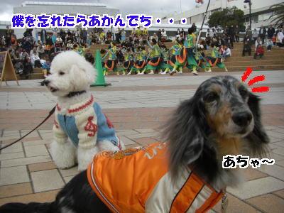 d0020869_2011062.jpg