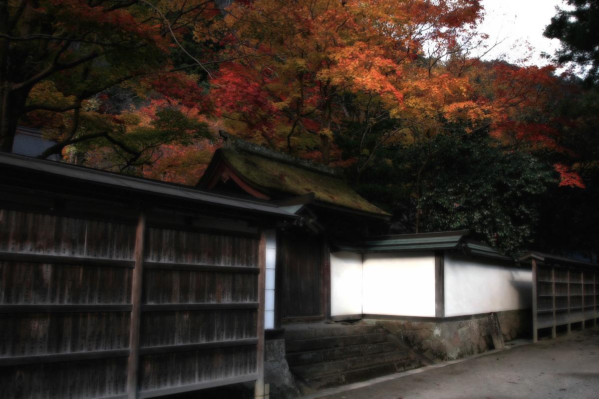 奈良 室生寺 1_f0021869_19511345.jpg