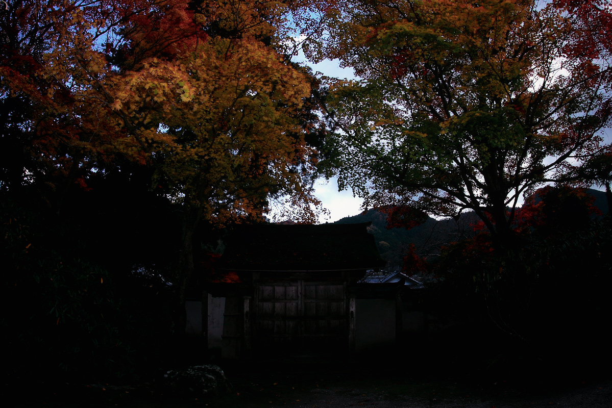 奈良 室生寺 1_f0021869_19541519.jpg