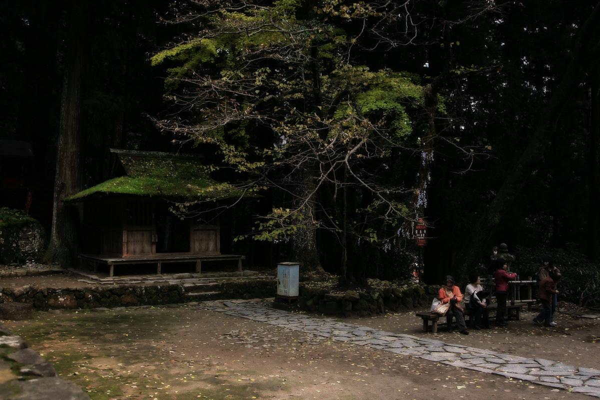 奈良 室生寺 1_f0021869_2225644.jpg