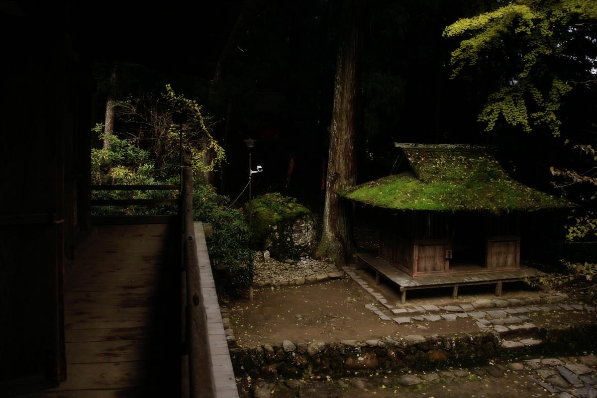 奈良 室生寺 1_f0021869_2226855.jpg
