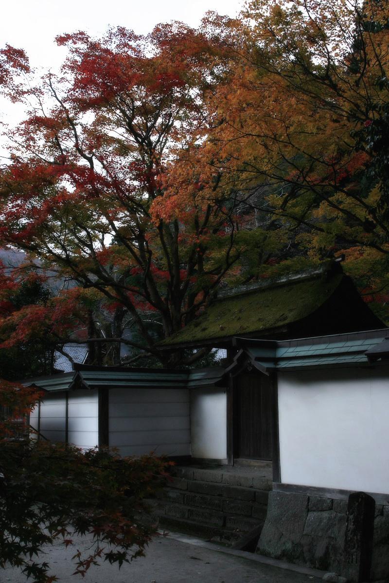 奈良 室生寺 1_f0021869_22275576.jpg