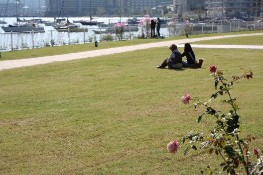 赤い風船~大津びわ湖館にて_b0055171_17384324.jpg