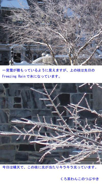 f0134885_5192060.jpg