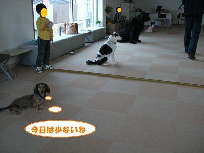 f0186040_1353448.jpg