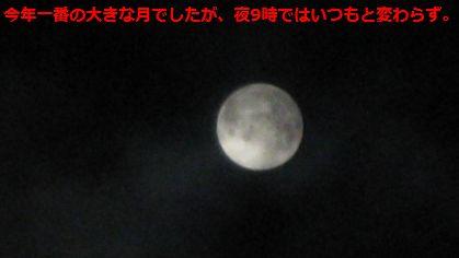 b0148945_21332535.jpg