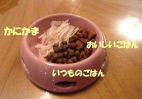 c0171358_22552044.jpg