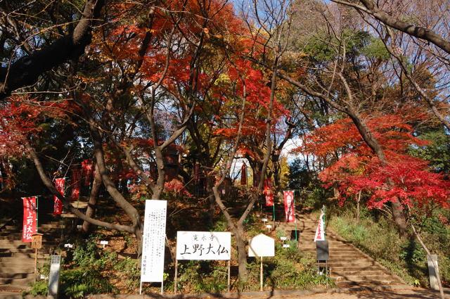 上野の大仏_c0081462_20112434.jpg