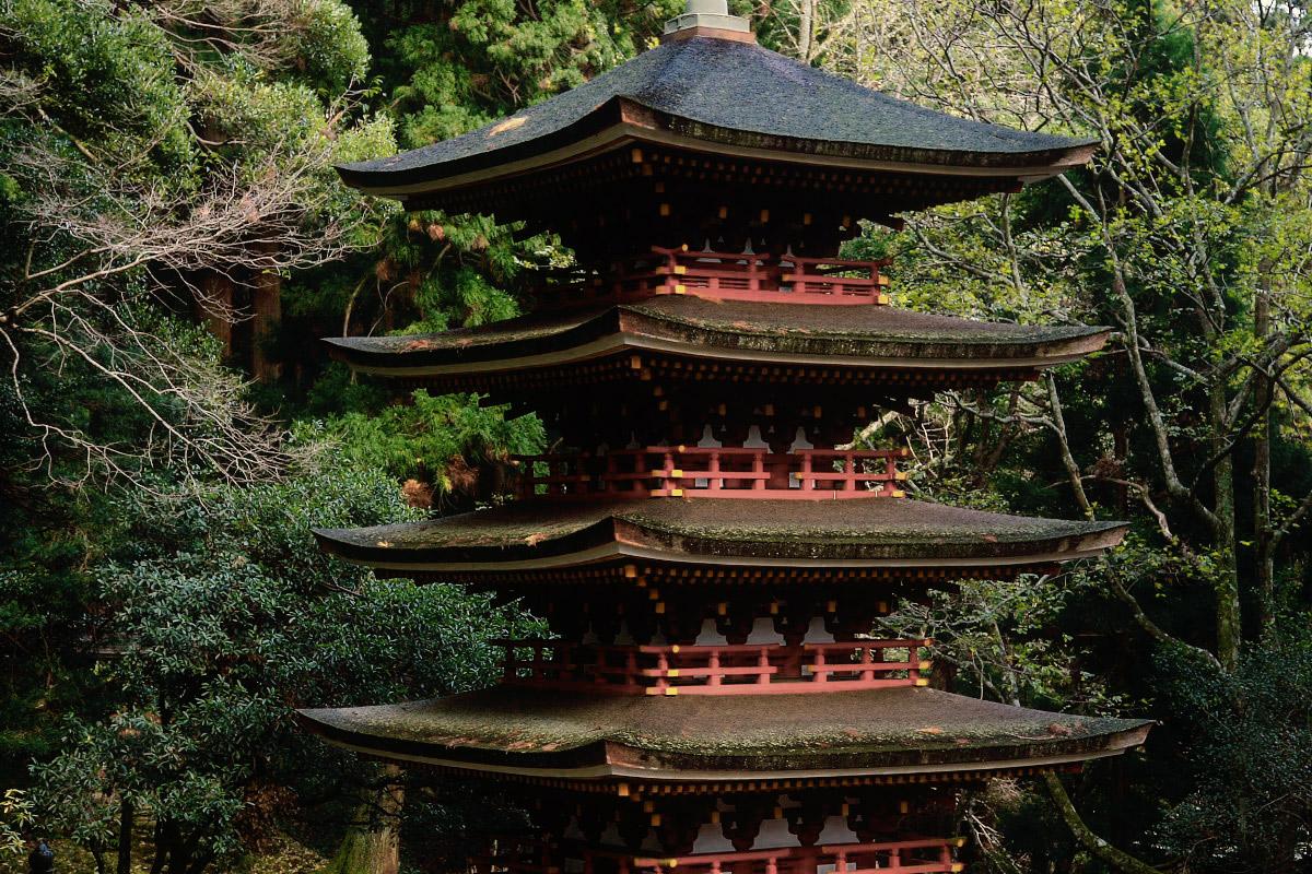 奈良 室生寺 2_f0021869_19525726.jpg