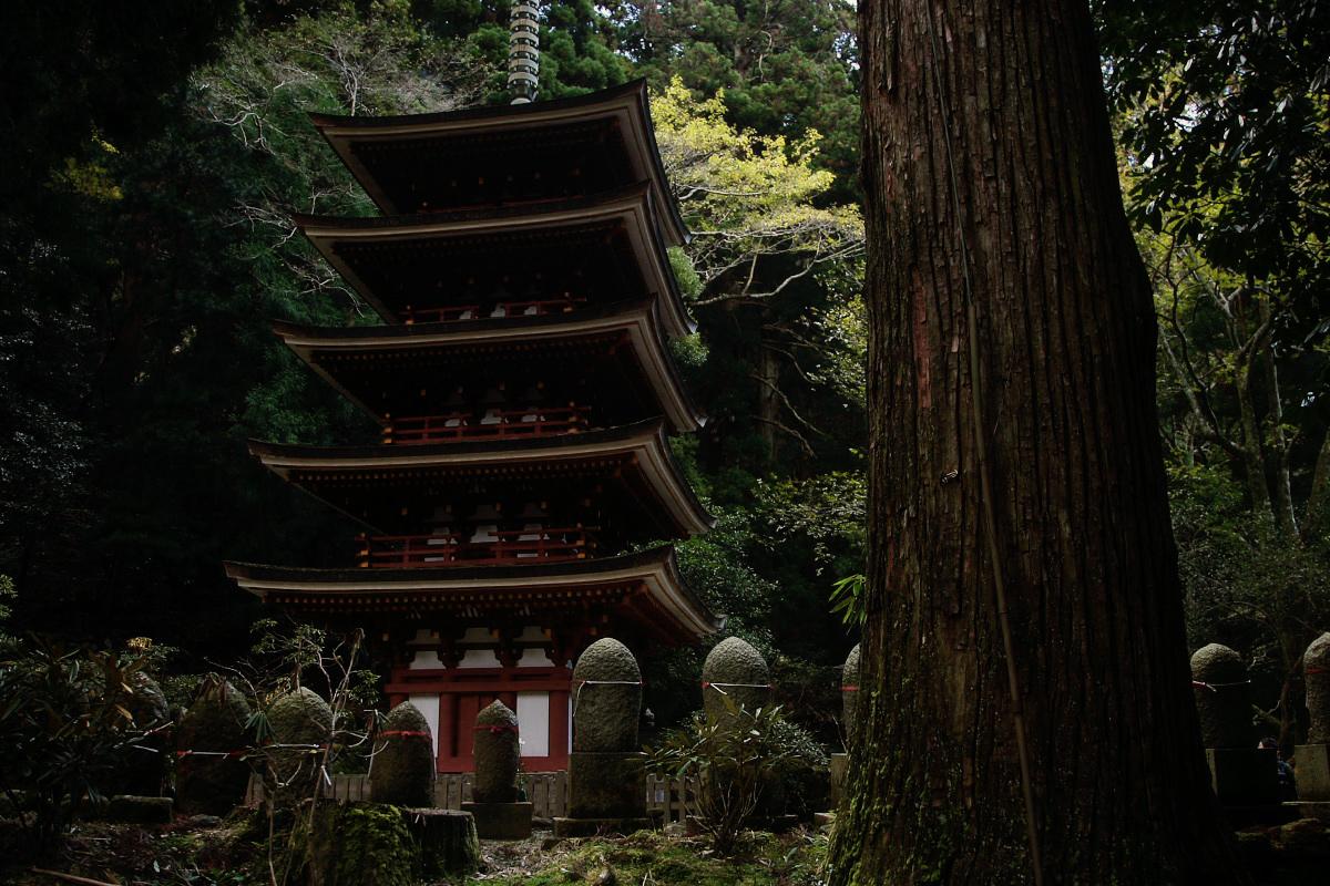 奈良 室生寺 2_f0021869_19551229.jpg