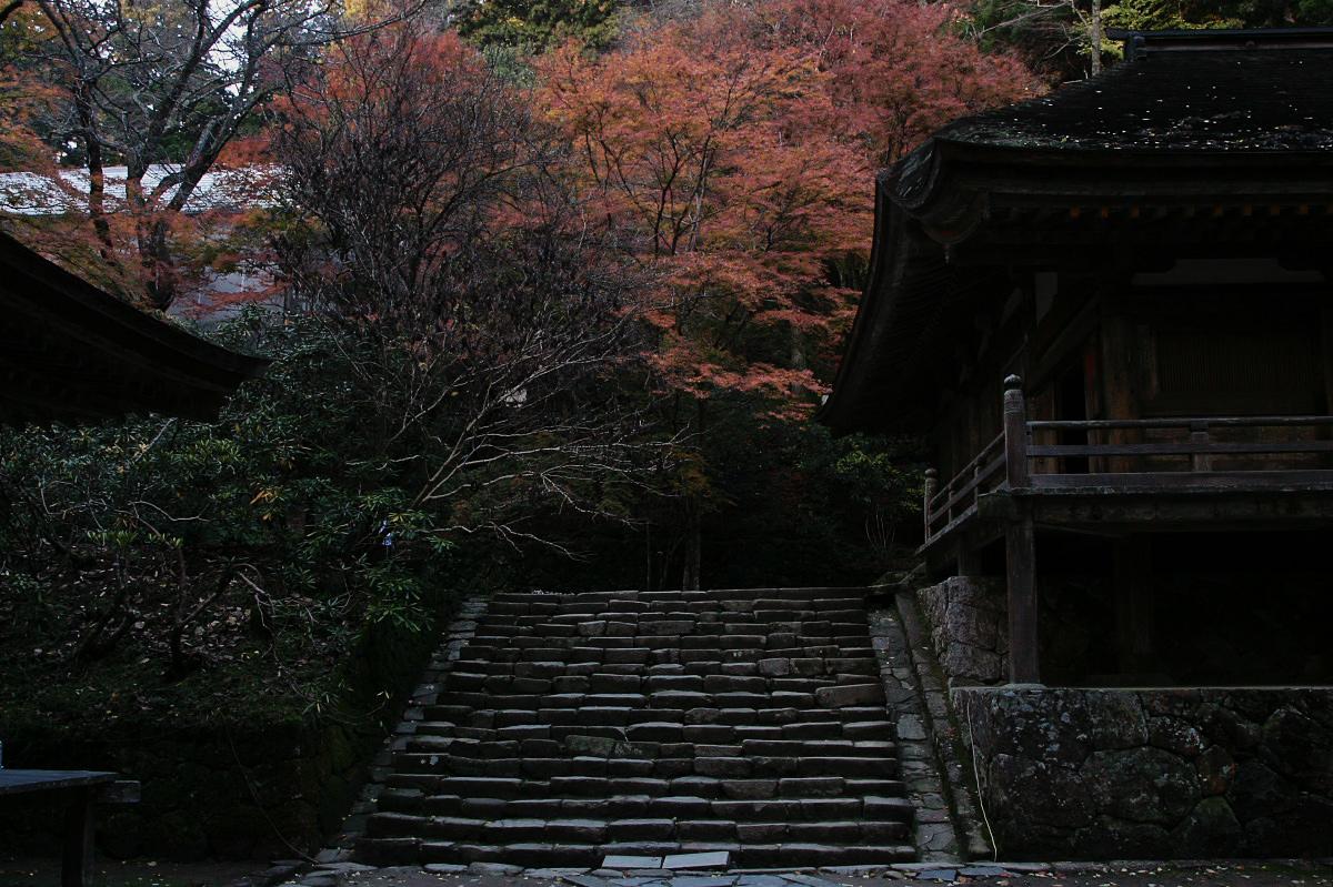 奈良 室生寺 2_f0021869_1957546.jpg
