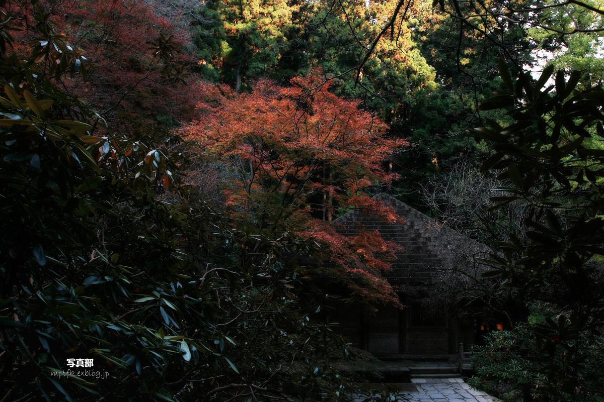 奈良 室生寺 2_f0021869_20103565.jpg