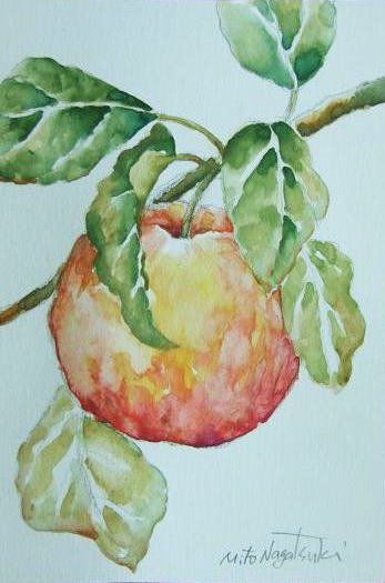 りんごの絵~水彩画~_b0089338_20173825.jpg