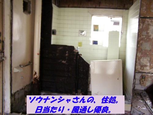 b0067012_1113535.jpg