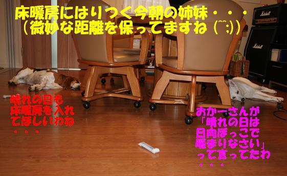 f0121712_15555624.jpg