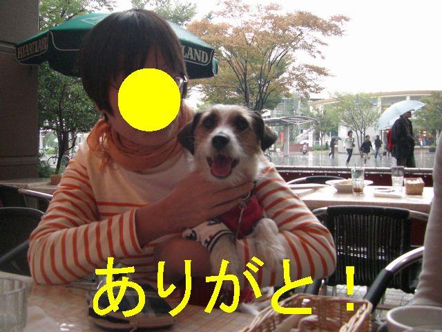 f0053952_12384378.jpg