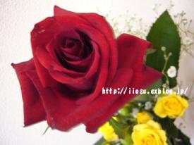 f0091282_23314641.jpg