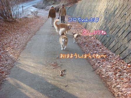 終始おとなっぽい五郎でした。_f0064906_1819511.jpg