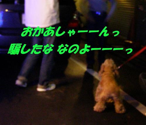 b0067012_15103994.jpg