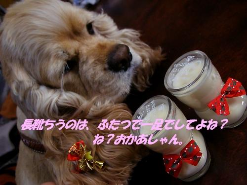 b0067012_15123585.jpg