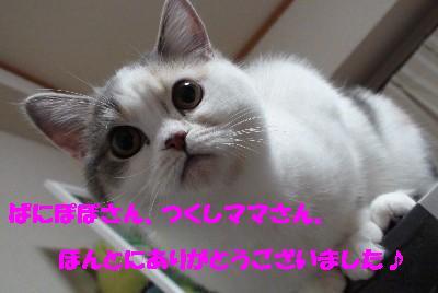 f0191716_149237.jpg