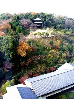 フォーシーズンズホテル椿山荘東京/\'08 December(2)_b0035734_1975838.jpg