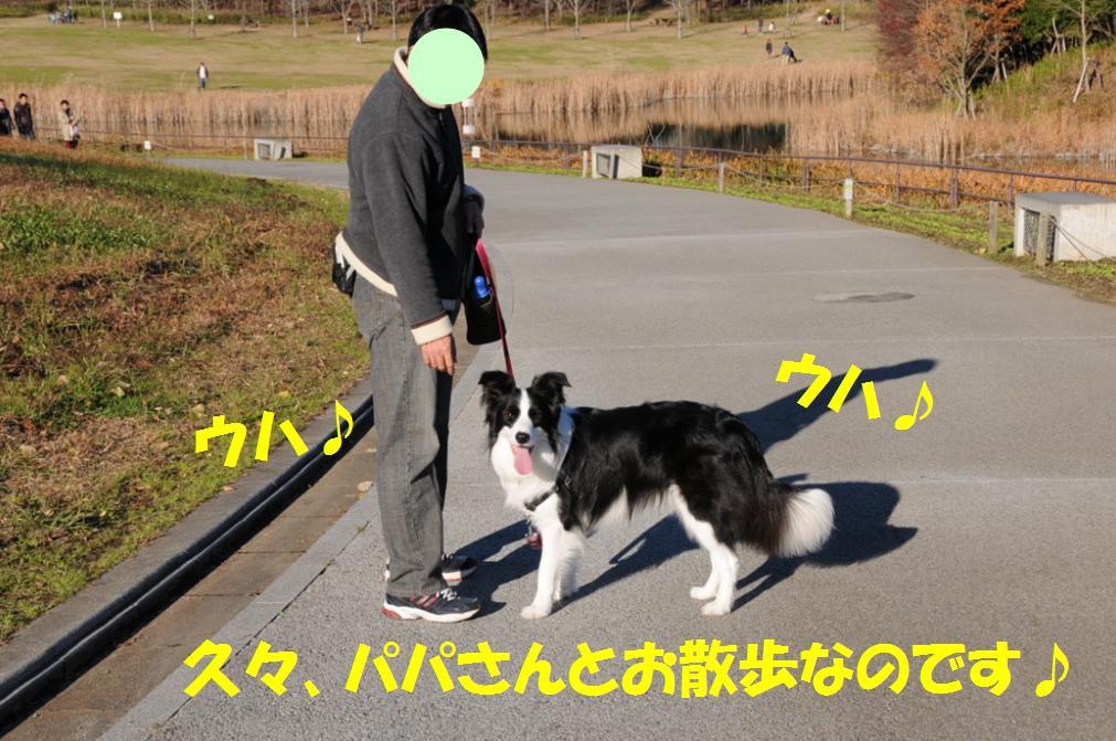 c0147241_0311230.jpg