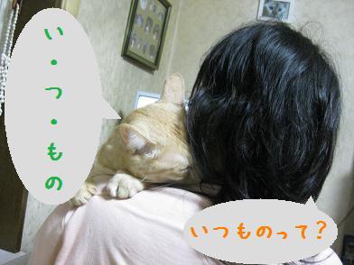 b0151748_1303928.jpg