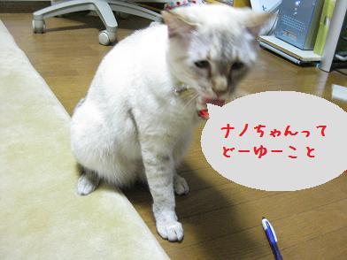 b0151748_1314217.jpg