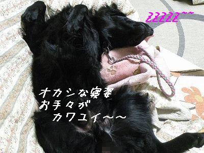 f0176499_1624668.jpg