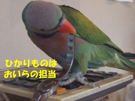 c0133013_13133853.jpg