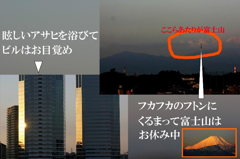 b0012636_1625655.jpg