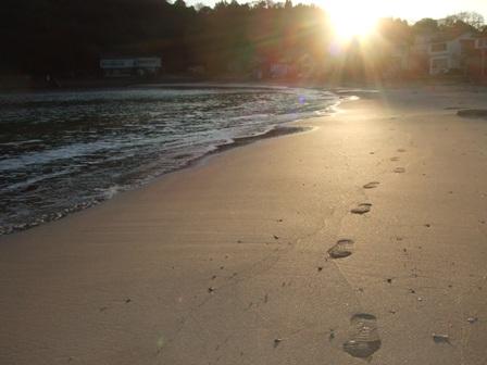 海岸散歩_d0007657_10203099.jpg