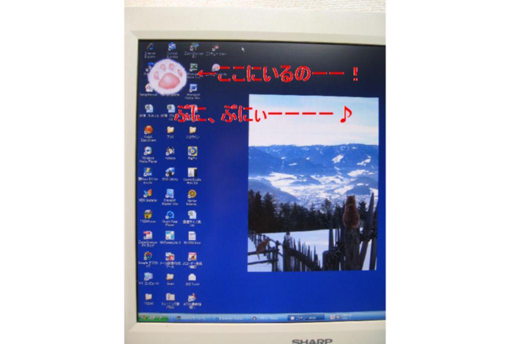 d0132661_16321637.jpg