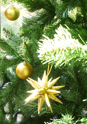 Royal Danish Embassyのクリスマス。.☆*:.。.☆*†_a0053662_835615.jpg