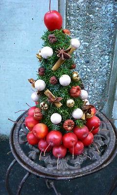 Apple Christmas?_c0137266_21595329.jpg