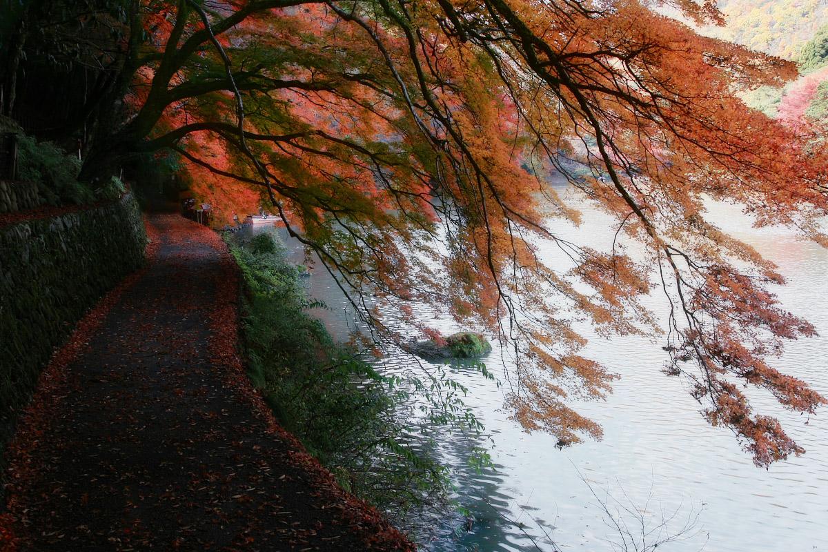 京都 嵐山 2_f0021869_2154940.jpg