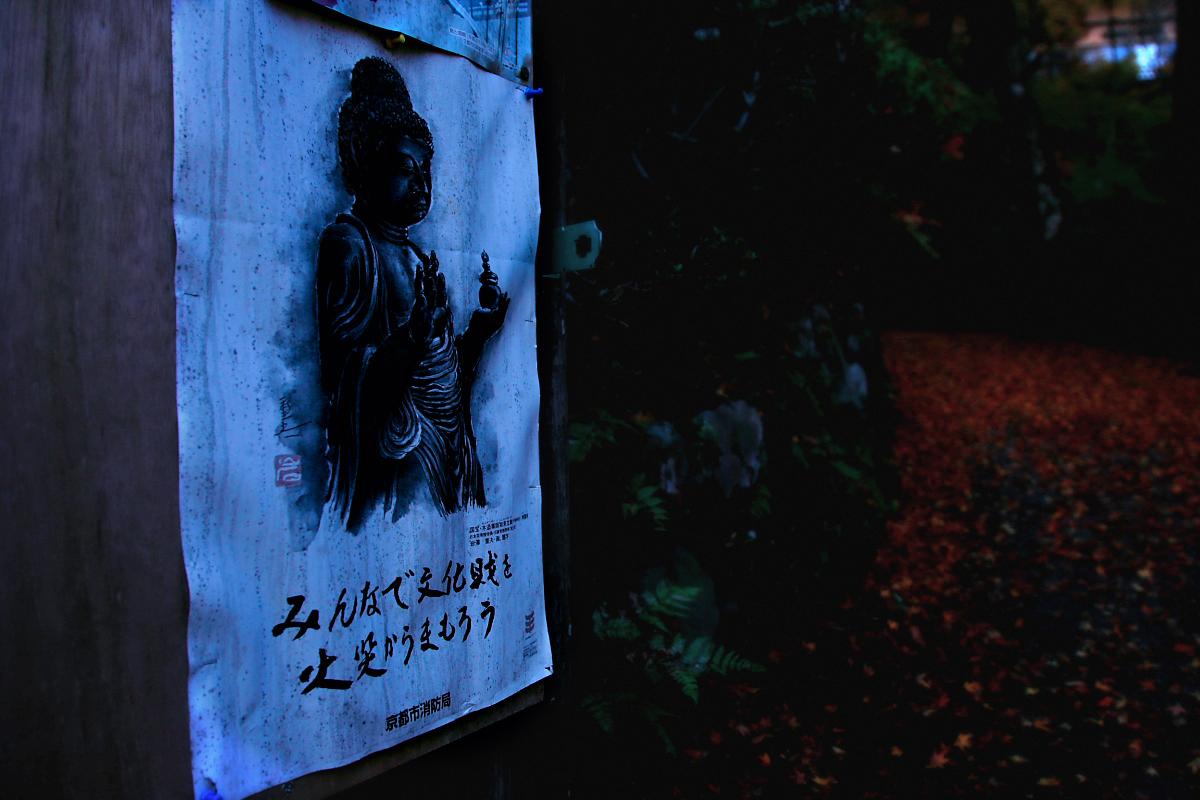 京都 嵐山 2_f0021869_219238.jpg