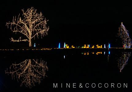 植物園_a0053987_6593440.jpg