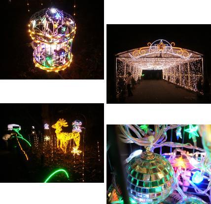 植物園_a0053987_7191544.jpg