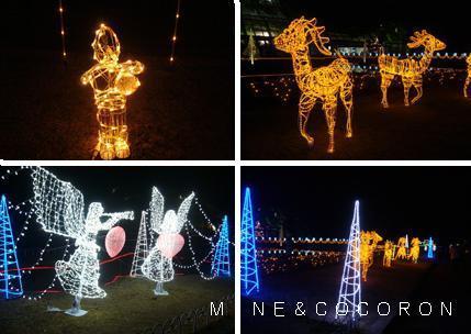 植物園_a0053987_724137.jpg